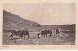1920 CIRCA LESSOUTO / LESOTHO LABOURS - Afrique Du Sud