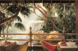 "EE.UU-NEVADA-LAS VEGAS: POSTCARD KOKOMO'S AT THE MIRAGE, IS AN EXOTIC ""OUTDOOR"" RESTAURANT. GECKO."