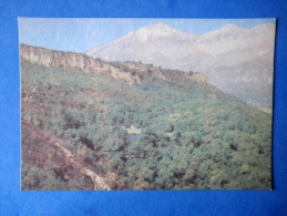 Arslan-Bob - Hazel Thickets - Nature Of Kyrgyzstan - 1969 - Kyrgyzstan USSR - Unused - Kirghizistan