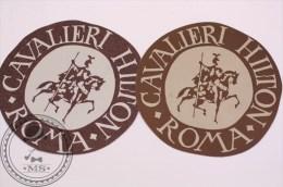 Hotel Cavalieri Hilton Roma, Italy - 2 Original Vintage Luggage Labels -Stickers - Hotel Labels