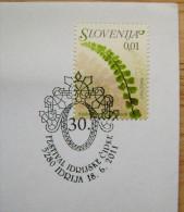 2011 SLOVENIA CANCELLATION ON COVER 30. IDRIJA LACES FESTIVAL LACE - Textile