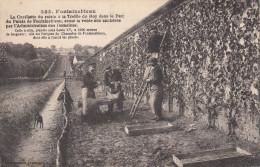 77 - FONTAINEBLEAU / LA CUEILLETTE DU RAISIN A LA TREILLE DU ROY DANS LE PARC DU CHATEAU - Fontainebleau