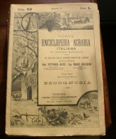 5 FASCICOLI NUOVA ENCICLOPEDIA AGRARIA ITALIANA - EDIZIONI UTET 1928 - Enciclopedie
