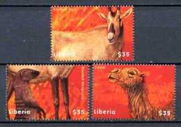 LIBERIA   2001   Yvert 3391/3393   Michel 4421/4423  . Camel, Mangoose, Oryx   Chameau, Mangouste - Paarden