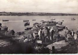 Tréhiguier..animée..le Port..arrivée Des Moules - Other Municipalities