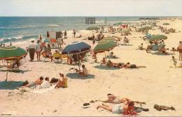 POSTCARD: BEAUTIFUL BEACH. WHITE SAND. POSTAL PLAYA CON GENTE BRONCEANDOSE. ARENAS BLANCAS.GECKO. - Postkaarten