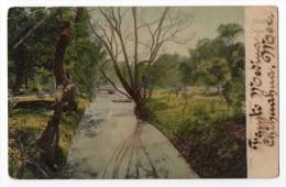 Mexico Chapultapec El Canal  Vintage Original Postcard  Ca1900 Cpa Ak (W3_3094) - México