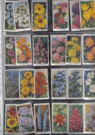 24  WILLS MIXED  CIGARETTE CARDS - Wills