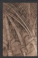 DF / 34   HERAULT / PIGNAN / ABBAYE DE VIGNOGOUL / 2.659 - France
