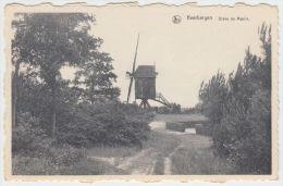 21249g MOULIN - DREVE - Keerbergen - Keerbergen