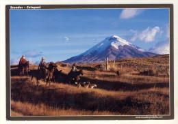 CPM  EQUATEUR - LE PARC NATIONAL COTOPAXI - Ecuador