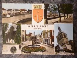 SAULIEU  (21). MULTIVUES . ANNEE  1962 - Saulieu
