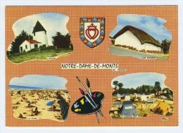 CP NOTRE DAME DE MONTS VENDEE  85  MULTIVUES 1972 - Chats