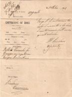 ANNULLI TONDO RIQUADRATI PUGLIA - CASTRIGNANO DEI GRECI (LECCE) TIPO G PUNTI 3 - 1900-44 Vittorio Emanuele III