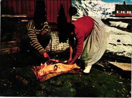 LA VIE GRONLAND A VOIR DECOUPE DU COCHON DE LAIT,PLAN COULEUR,A VOIR !!   REF 36973 - Groenlandia