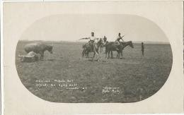 A Vicious Buffalo Bull Defends His Dying Mate Marrakai N.T. Ryko Photo Real Photo - Otros