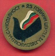 F1281 / 25 YEARS CENTRE For Amateur  Activities - SONGBIRD - Bulgaria Bulgarie Bulgarien Bulgarije - Badge Pin - Muziek