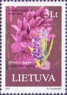 Lithuania - Spotted Orchid (Dactylorhiza Maculata), Stamp, MINT, 2013 - Orquideas