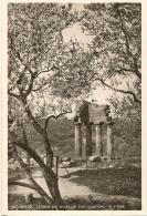 SICILIA - AGRIGENTO - Tempio Dei Dioscuri Con Mandorli In Fiore - Foto - Agrigento