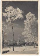Februar Bei Sonne. (Hamburg - Staines, England  6.3.37) Karl Gubisch - Germany