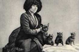 Colette Les Amis, Collection Reutlinger, Carte Moderne, Chiens - Writers