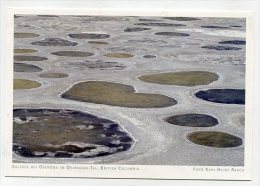 CANADA - AK 192576 British Columbia - Salzsee Bei Osoyoos Im Okanagan-Tal - Other