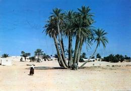 DOUZ - Un Bouquet De Palmiers - Sondermarke - Tunesien