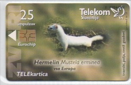 Telekom Slovenije 25 Impulzov - Zveri - Slovenia