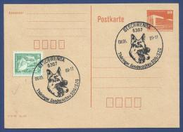 GERMAN DEMOCRATIC REPUBLIC  POSTCARD POST CARD DOG ANIMALS ANIMAL CONDITION   AS PER SCAN - Postcards