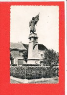 59 WORMHOUT Cpsm Monument Aux Morts Droguerie      5  La Cigogne - Wormhout