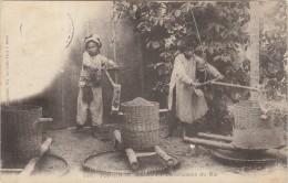 TONKIN / NAM DINH  DECORTICATION DU RIZ     /////   MARS 14 / REF 1904 - Tibet