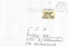 Botswana 2004 Francistown Serval Cat Cover - Botswana (1966-...)