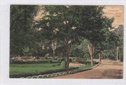 ROMANIA TEMESVAR Nice Postcard - Roemenië