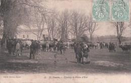 COZES Champ De Foire D'Eté (1907) - France