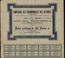 ESPAGNE ESPANA MINAS / Compania De Las Carboneras De Asturias, San Sebastian, Accion, 1907 - Mineral