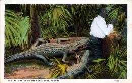 PANAMA, HIS LAST PRAYER ON THE CANAL ZONE, 192?, Krokodile Greifen Neger An - Ansichtskarten