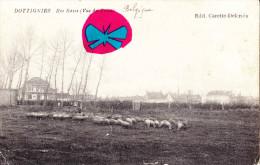DOTTIGNIES - Rue Basse (Vue Du Trieu) - Superbe Carte Avec Plusieurs Moutons - Moeskroen