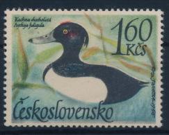**Czechoslovakia 1967 Mi 1687 Duck Water Bird MNH - Ungebraucht
