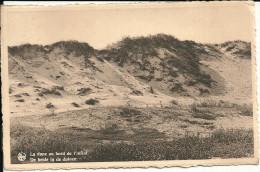 Nieuport Bains   La Dune Au Bord De L Infini - Nieuwpoort