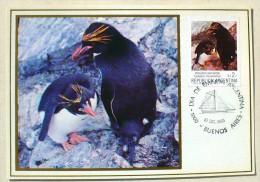 ARGENTINE MANCHOTS, PINGOUINS, Philatelie Polaire, Carte Maximum Premier Jour 10/12/1983 Pinguino Macaroni - Penguins