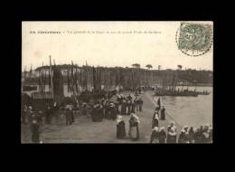 29 - CONCARNEAU - Pêche Sardines - Concarneau