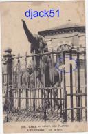 PARIS - JARDIN DES PLANTES - L'ELEPHANT Fait Le Beau - Parks, Gardens