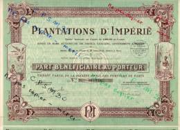 Action - Plantations D' IMPERIE - 40.000 Actions De 100 Fr Siège Social à Grand-Bassam Cote-d'Ivoire - Actions & Titres
