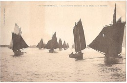 Dépt 29 - CONCARNEAU - La Caravane Rentrant De La Pêche à La Sardine - Concarneau