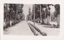 Iran - Téhéran - Ispahan - Tehran - Road To The Bridges - Iran