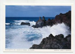 SPAIN  - AK 193111 La Palma - Westküste Bei Charco Verde - La Palma