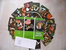 Nice Issue Of Mushrooms Pilz 21 Cards In Folder From Czech - Fiori, Piante & Alberi