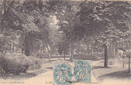 23384 Saint Germain En Laye Jardin Anglais -Abeille 22 -