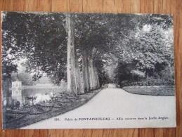 FONTAINEBLEAU / LE PALAIS / TRES BEAU LOT DE 64 CARTES / TOUTES LES PHOTOS - Fontainebleau
