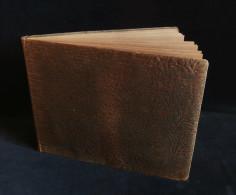 ( Danemark Allemagne ) Plébiscite Du SCHELSWIG 1920 Flensborg 22e BCA Paul Claudel Album 46 Photos HOLGER DAMGAARD - Places